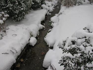 winter_20100702_1568452305